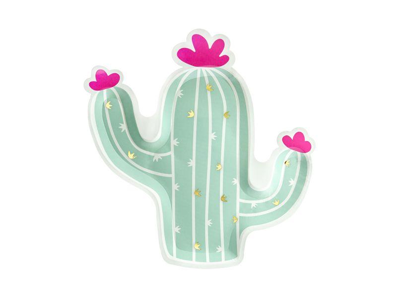 plato cactus